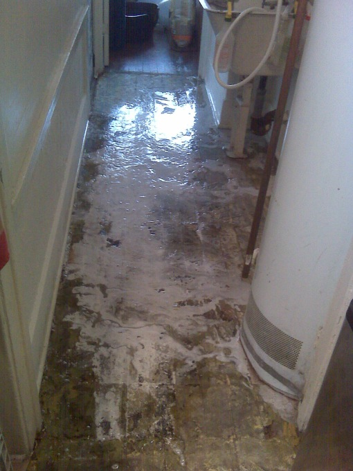bleaching the hell out of the underlying wood to kill the smell and disinfect the cat piss permeating the subfloor